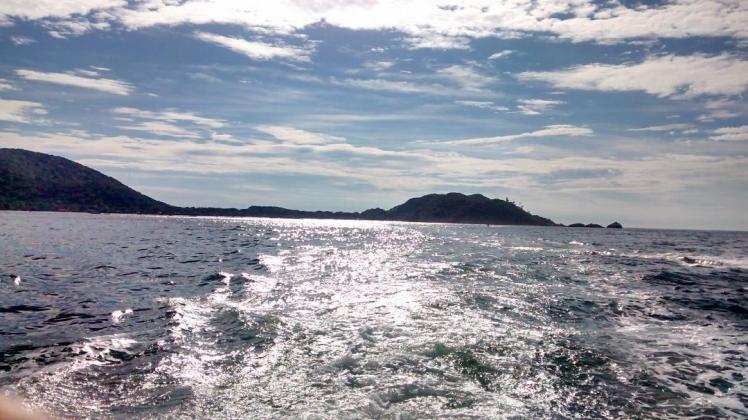 Ilha 8